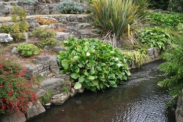 tuin laten aanleggen Almere